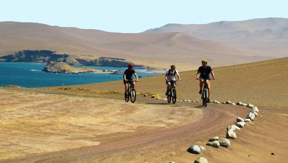 tour bicicletas paracas